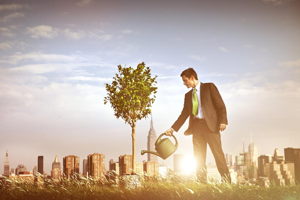 株式投資(持株会/個別株)、ロボ投資、NISA、つみたてNISAを実績・経験を公開
